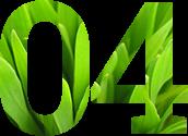 green-grass-1398913-639x852