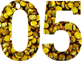 peas-1562352-640x480