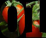 some-nice-tomatoes-1511966-639x424